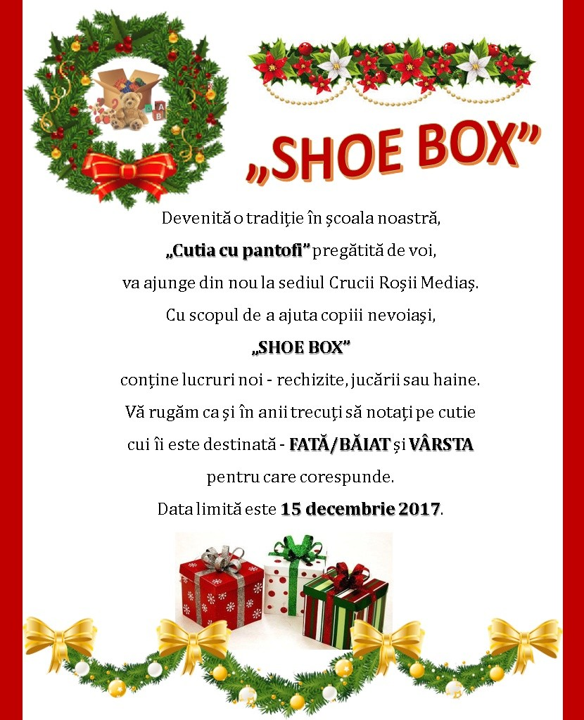 shoe box(1)