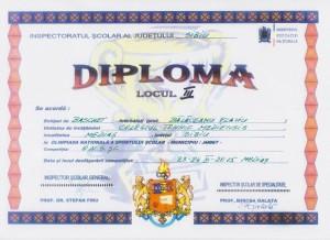 2015 - diploma baschet