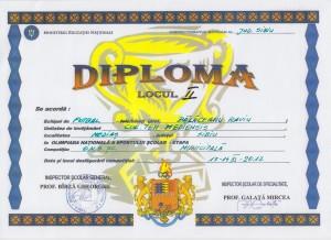 2017 - diploma fotbal