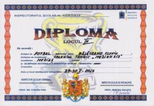 diploma001